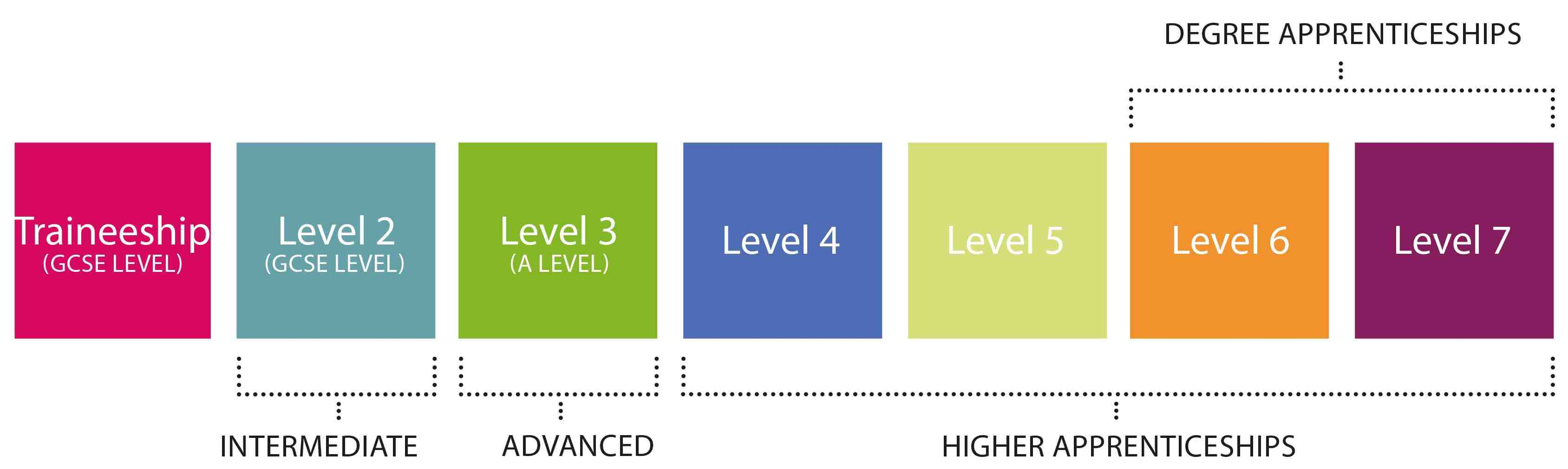 Different levels of degree apprenticeships